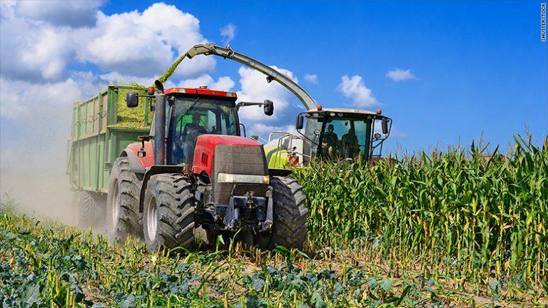 Mexico ready to retaliate by hurting American corn farmers